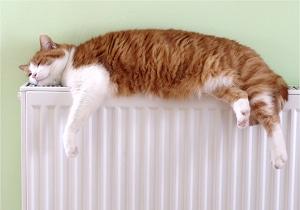 Illustration de la partie technique Systèmes de chauffage